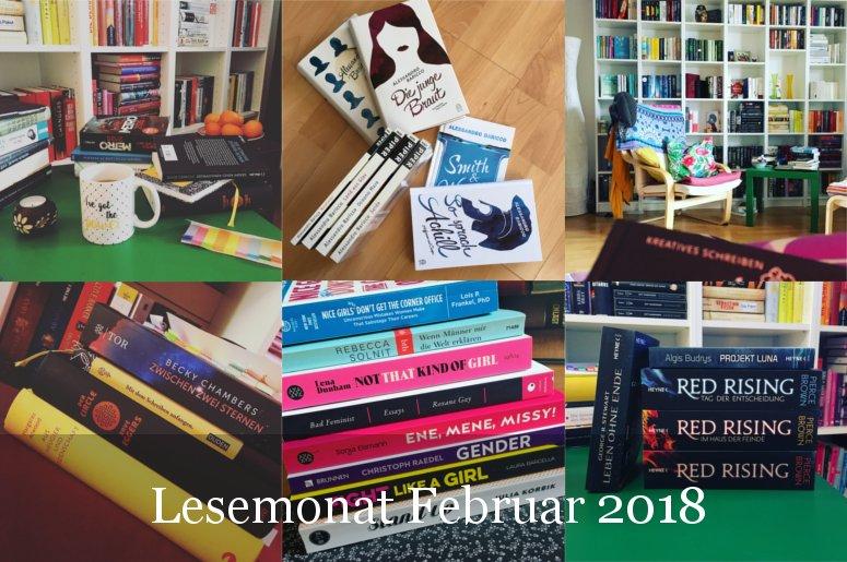 Lesestatistik Februar 2018