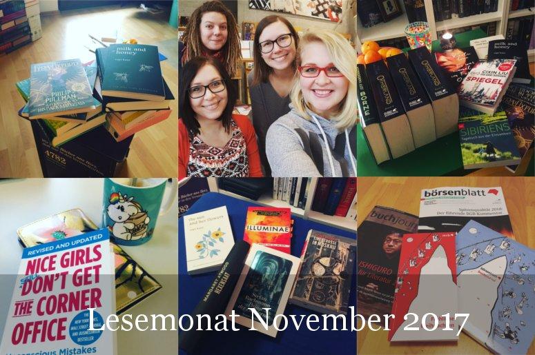 Lesestatistik November 2017