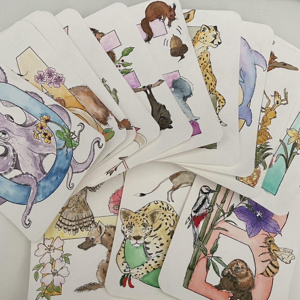 Buchstabenkarten von Zockernautin